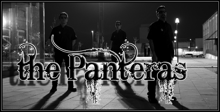 the_panteras_web_front