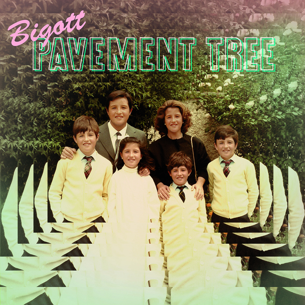 pavement tree