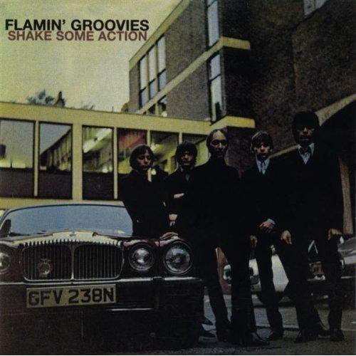 flamingroovies