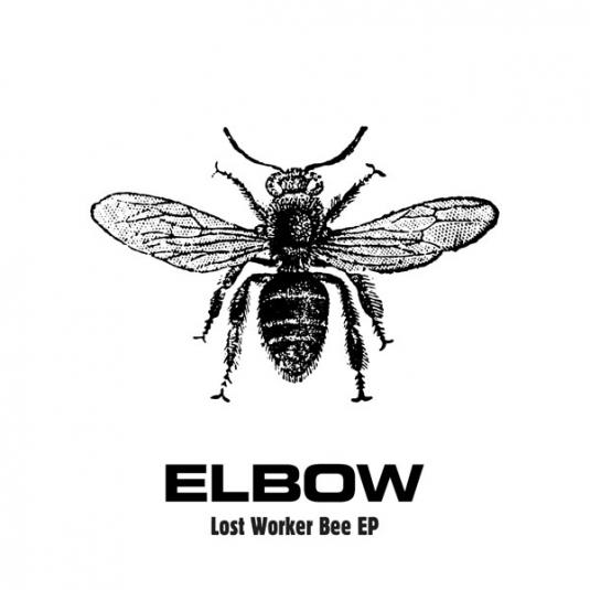 elbowbee