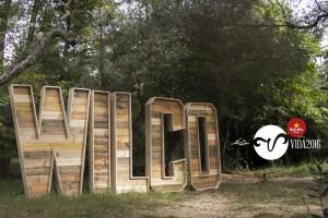 Wilco_Vida+Festival_ARtwork