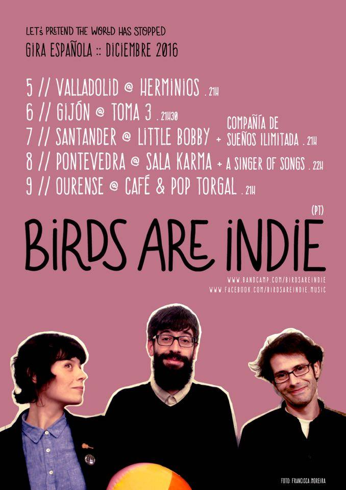birds-gira