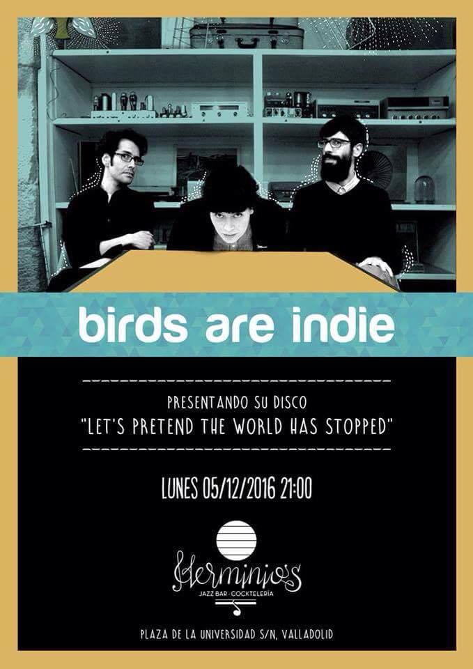birds-valladolid