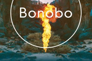 bonobo madrid wizink center