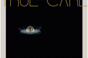 True Care es el nuevo álbum de James Vincent McMorrow