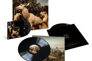 lp y dvd interpol our love to admire reissue