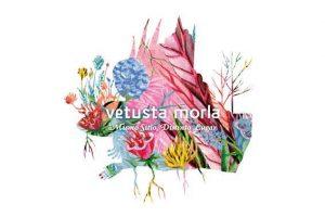 Mismo Sitio Distinto Lugar es lo nuevo de Vetusta Morla