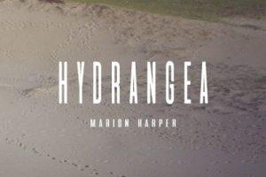 Mario Harper presentará su nuevo disco 'Hydrangea' en Madrid y Barcelona
