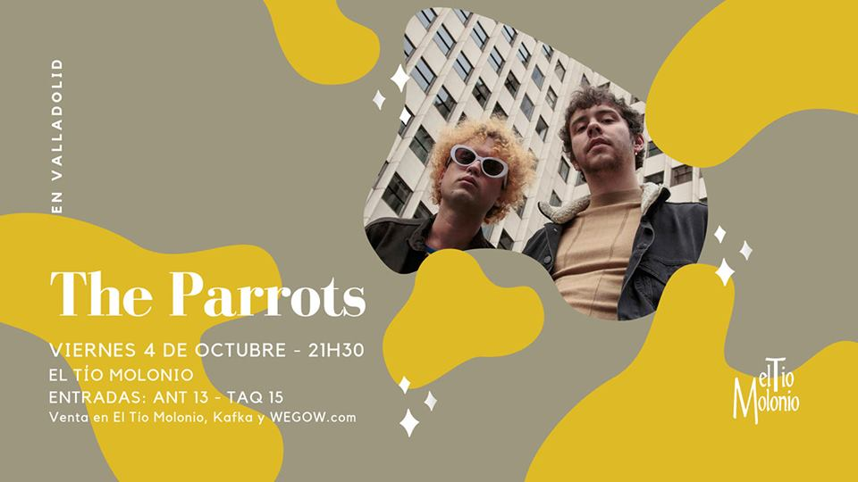 the parrots en valladolid