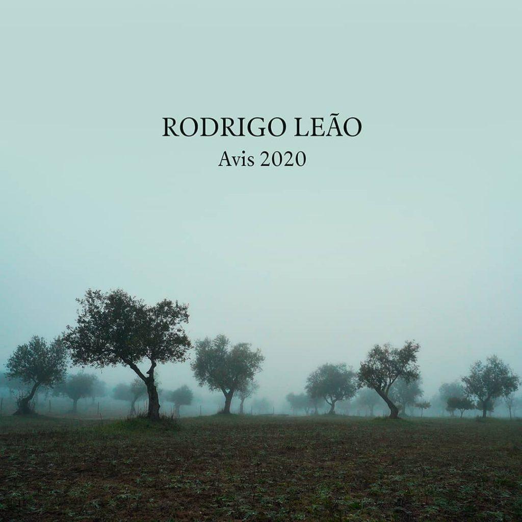 rodrigo leao avis 2020