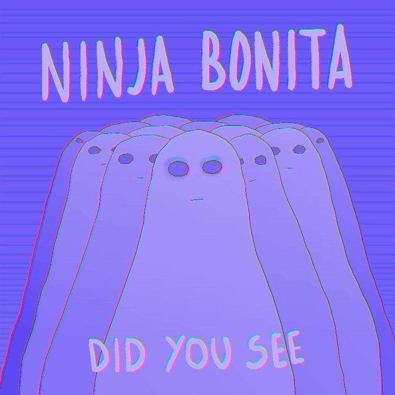 ninja bonita